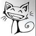 Электро-кот